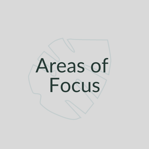 Areas of Focus Link Button