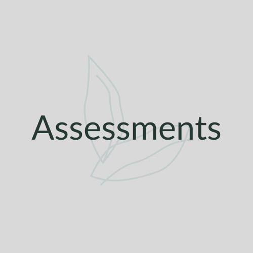 Assessments Link Button